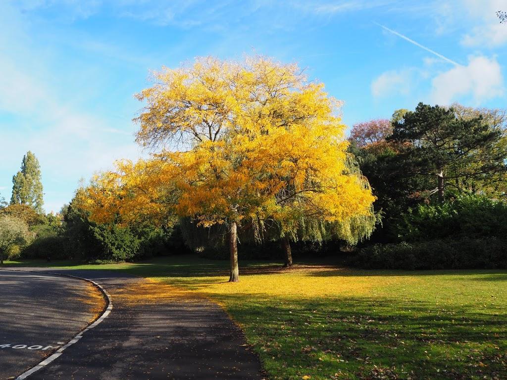 Dulwich Park – park odpowiedni dla każdego