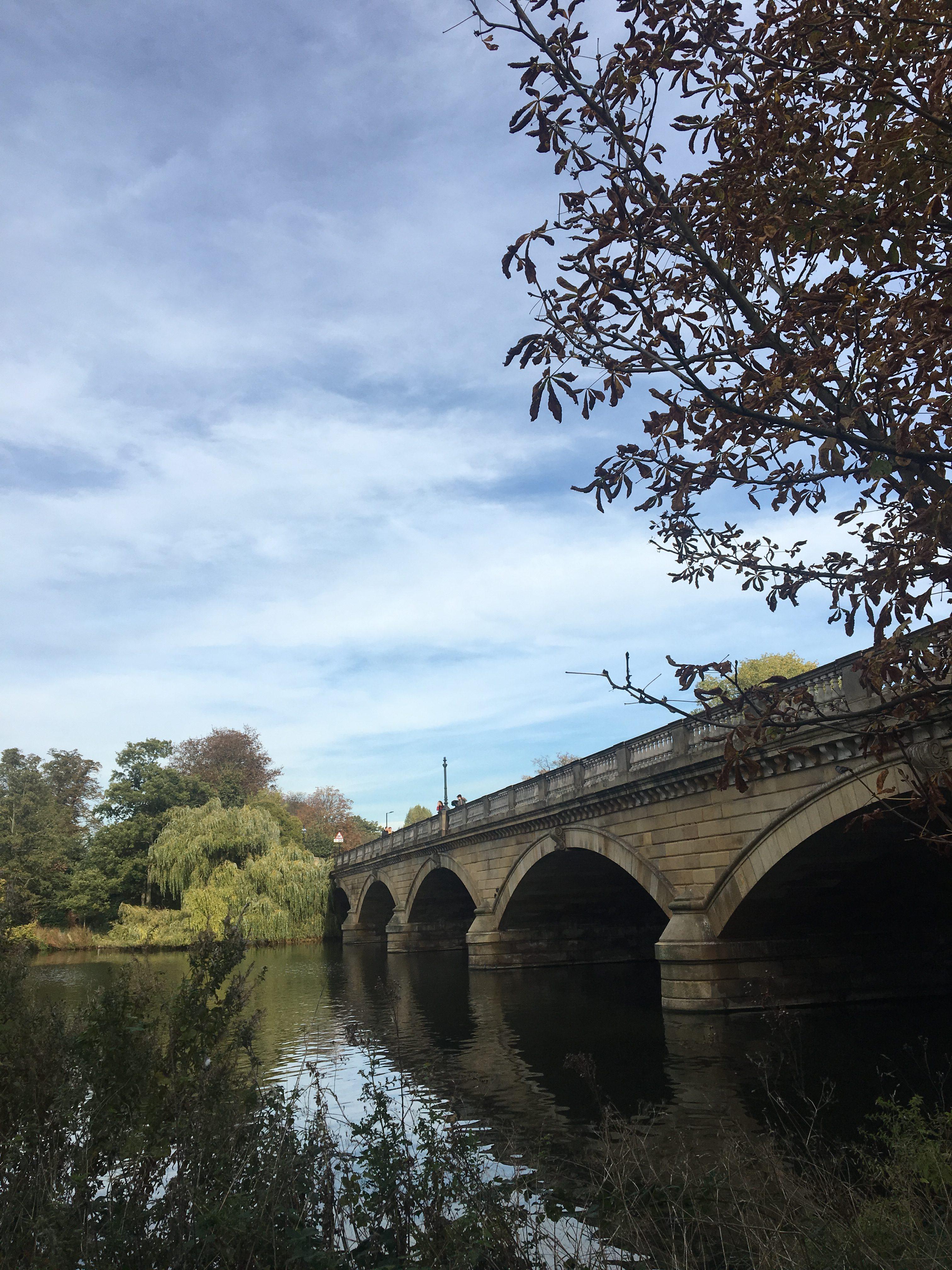 jesień w hyde park
