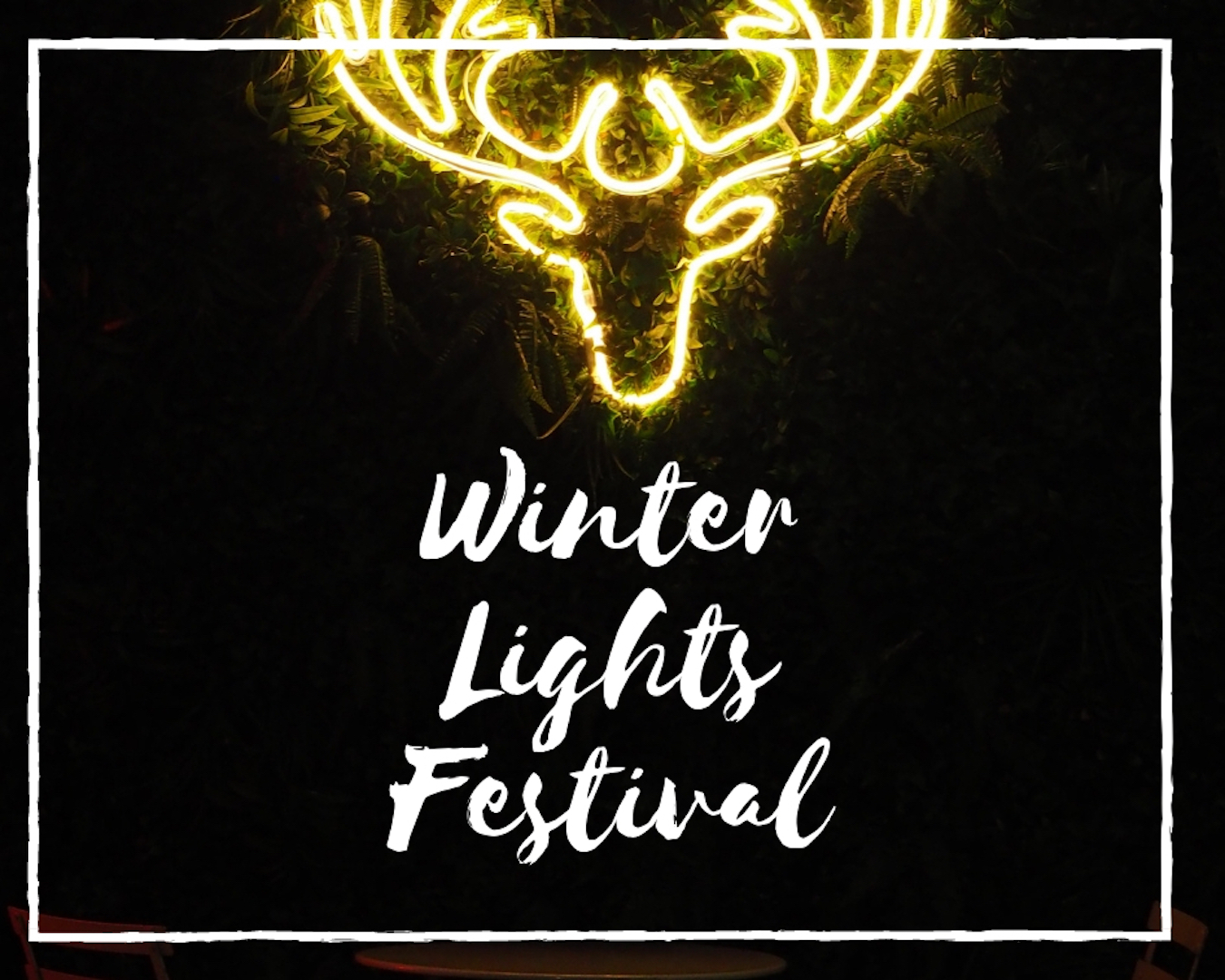 Winter Lights Festival – Canary Wharf